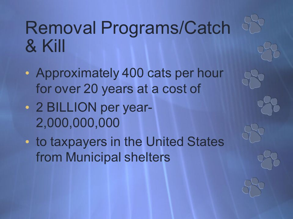 Removal Programs/Catch & Kill Approximately 400 cats per hour for over 20 years at a cost of 2 BILLION per year- 2,000,000,000 to taxpayers in the United States from Municipal shelters