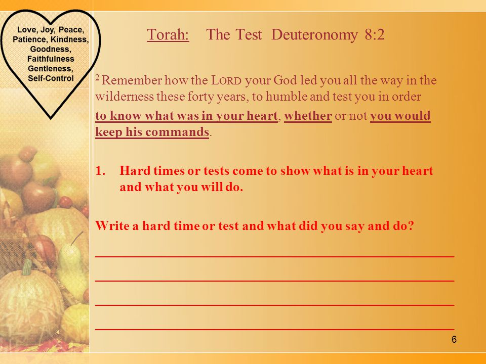 Torah: The Test Deuteronomy 8:2 2 Remember how the L ORD your God led you all the way in the wilderness these forty years, to humble and test you in order to know what was in your heart, whether or not you would keep his commands.