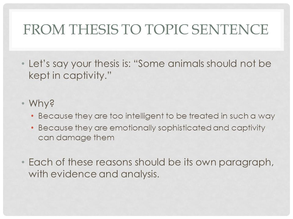TOPIC SENTENCE Many animals are highly emotional and keeping them in captivity causes them undue stress and suffering. Clear statement.