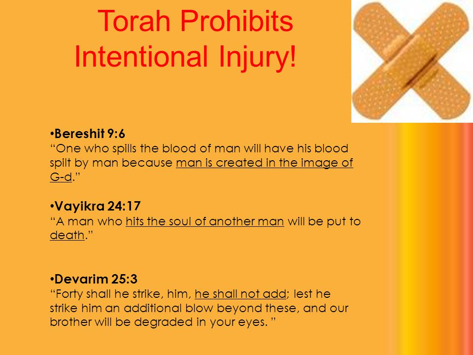 "Torah Prohibits Intentional Injury! Bereshit 9:6 ""One who spills the blood of man will have his blood spilt by man because man is created in the image"