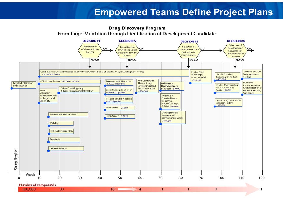 Empowered Teams Define Project Plans