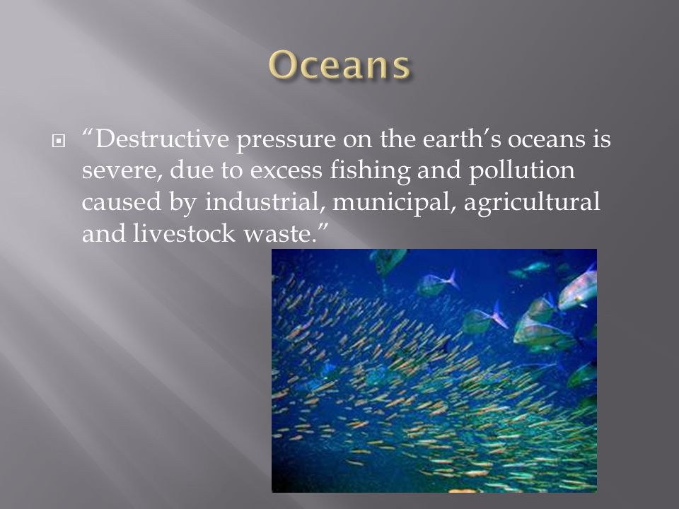  Destructive pressure on the earth's oceans is severe, due to excess fishing and pollution caused by industrial, municipal, agricultural and livestock waste.