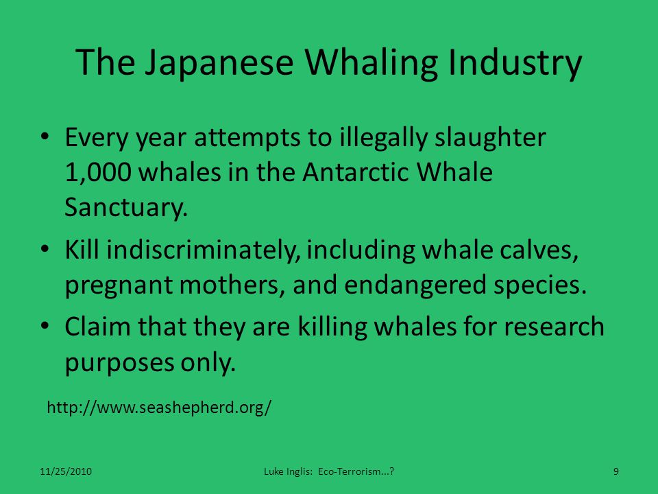 International Whaling Commission 11/25/2010Luke Inglis: Eco-Terrorism...?10 Purpose: to provide for the proper conservation of whale stocks.