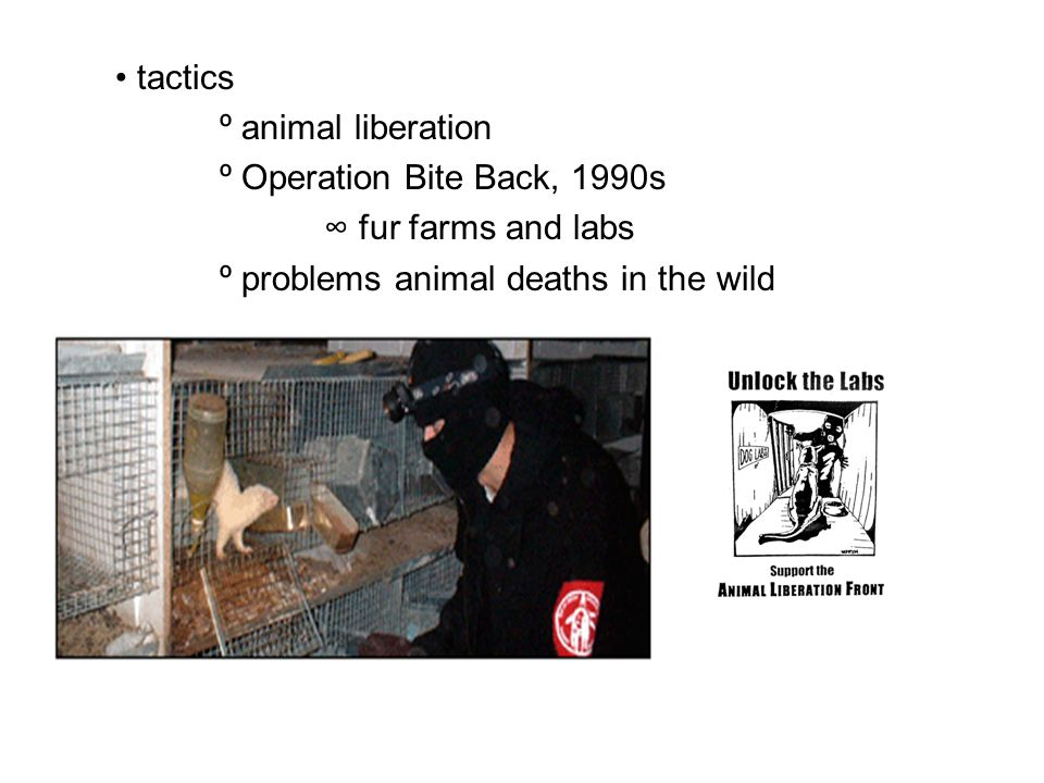 tactics º animal liberation º Operation Bite Back, 1990s ∞ fur farms and labs º problems animal deaths in the wild