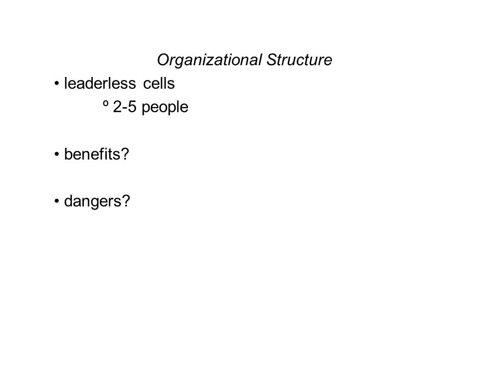 Organizational Structure leaderless cells º 2-5 people benefits? dangers?