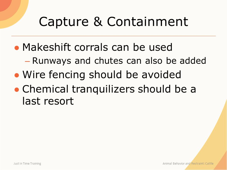 Capture & Containment ●Makeshift corrals can be used – Runways and chutes can also be added ●Wire fencing should be avoided ●Chemical tranquilizers sh