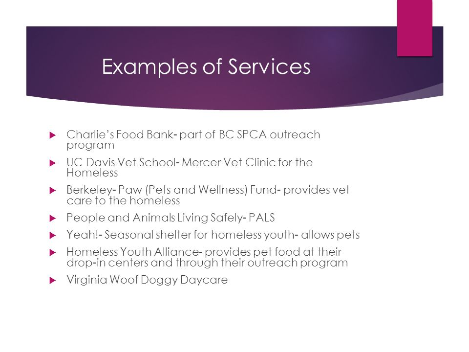 Examples of Services  Charlie's Food Bank- part of BC SPCA outreach program  UC Davis Vet School- Mercer Vet Clinic for the Homeless  Berkeley- Paw (Pets and Wellness) Fund- provides vet care to the homeless  People and Animals Living Safely- PALS  Yeah!- Seasonal shelter for homeless youth- allows pets  Homeless Youth Alliance- provides pet food at their drop-in centers and through their outreach program  Virginia Woof Doggy Daycare
