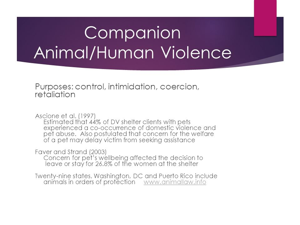 Companion Animal/Human Violence Purposes: control, intimidation, coercion, retaliation Ascione et al.