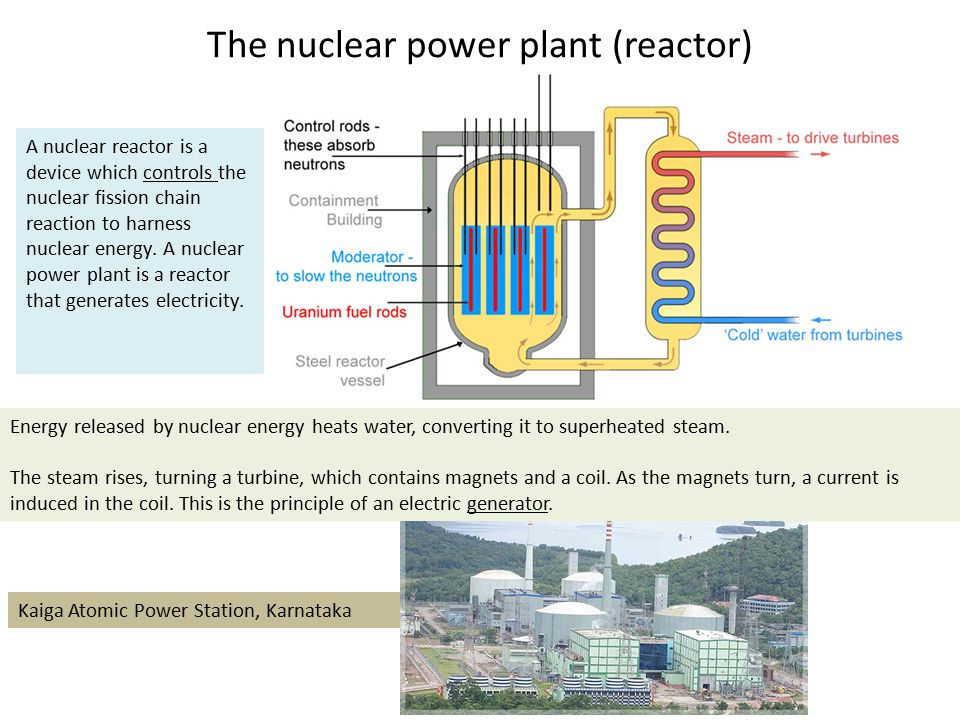 The nuclear power plant (reactor) A nuclear reactor is a device which controls the nuclear fission chain reaction to harness nuclear energy. A nuclear
