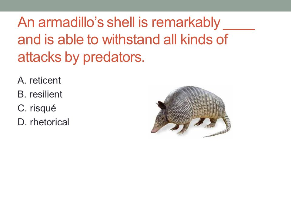 An armadillo's shell is remarkably ____ and is able to withstand all kinds of attacks by predators.