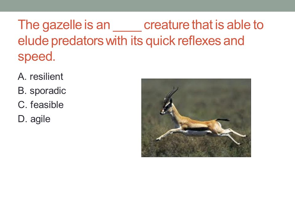 The gazelle is an ____ creature that is able to elude predators with its quick reflexes and speed.