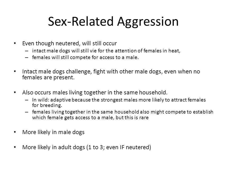 Sex-Related Aggression Even though neutered, will still occur – intact male dogs will still vie for the attention of females in heat, – females will s