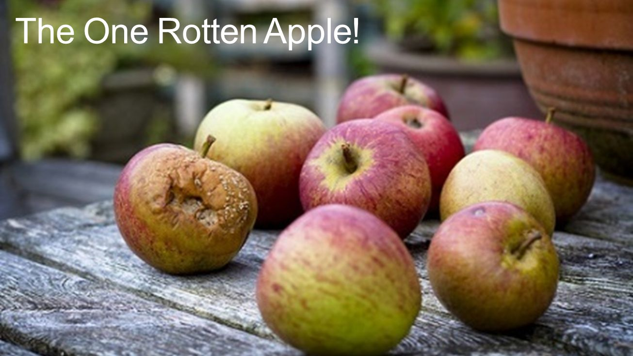 The One Rotten Apple!