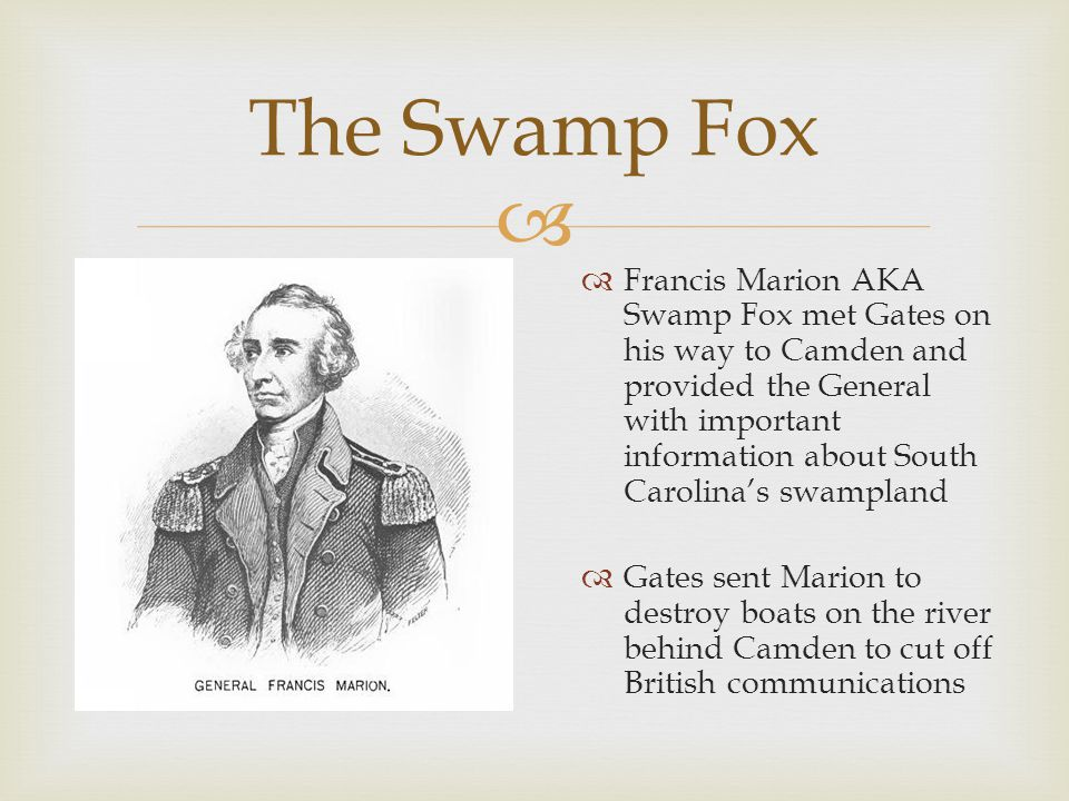  The Swamp Fox  Francis Marion AKA Swamp Fox met Gates on his way to Camden and provided the General with important information about South Carolina's swampland  Gates sent Marion to destroy boats on the river behind Camden to cut off British communications