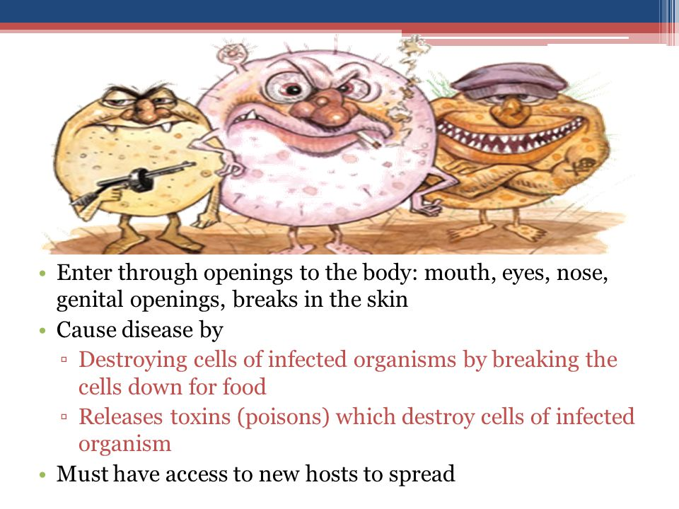 Enter through openings to the body: mouth, eyes, nose, genital openings, breaks in the skin Cause disease by ▫Destroying cells of infected organisms by breaking the cells down for food ▫Releases toxins (poisons) which destroy cells of infected organism Must have access to new hosts to spread