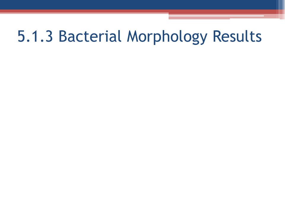 5.1.3 Bacterial Morphology Results
