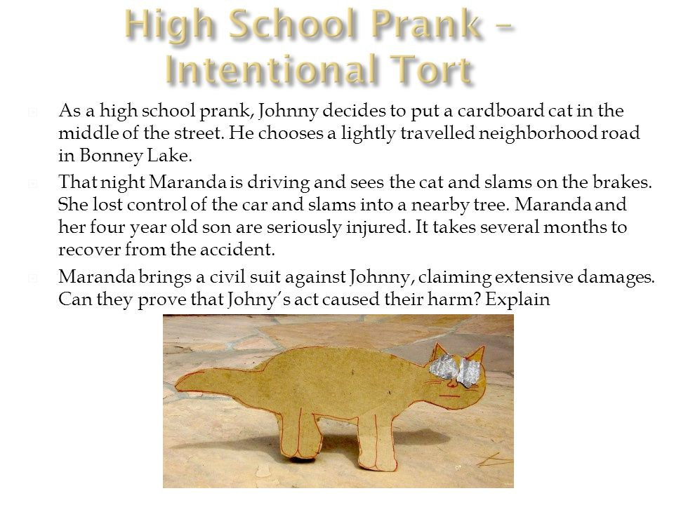  As a high school prank, Johnny decides to put a cardboard cat in the middle of the street.