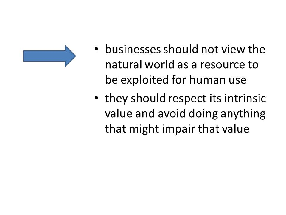businesses should not view the natural world as a resource to be exploited for human use they should respect its intrinsic value and avoid doing anything that might impair that value