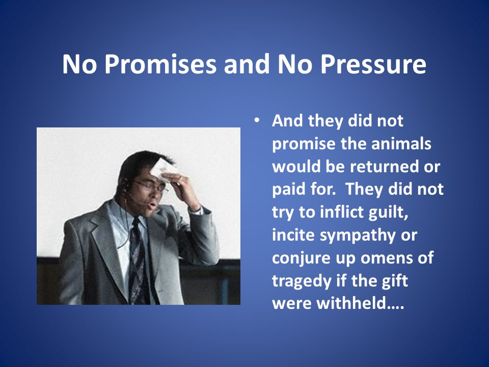 No Promises and No Pressure And they did not promise the animals would be returned or paid for.