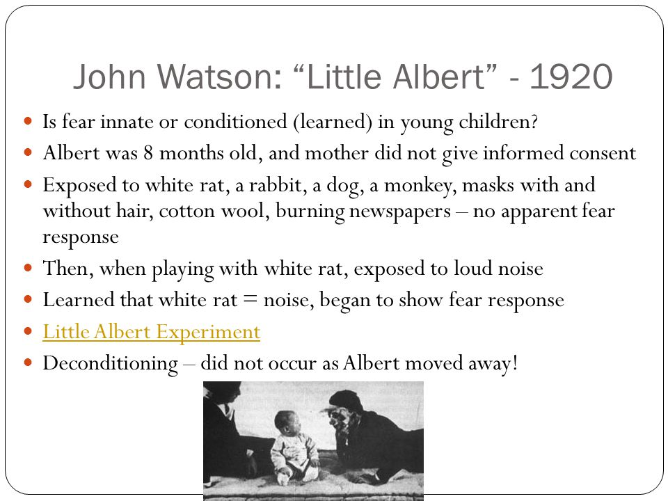 "John Watson: ""Little Albert"" - 1920 Is fear innate or conditioned (learned) in young children? Albert was 8 months old, and mother did not give inform"