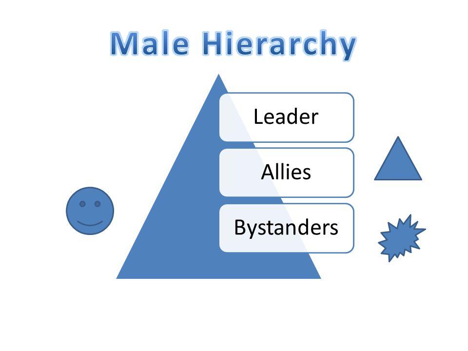 LeaderAlliesBystanders