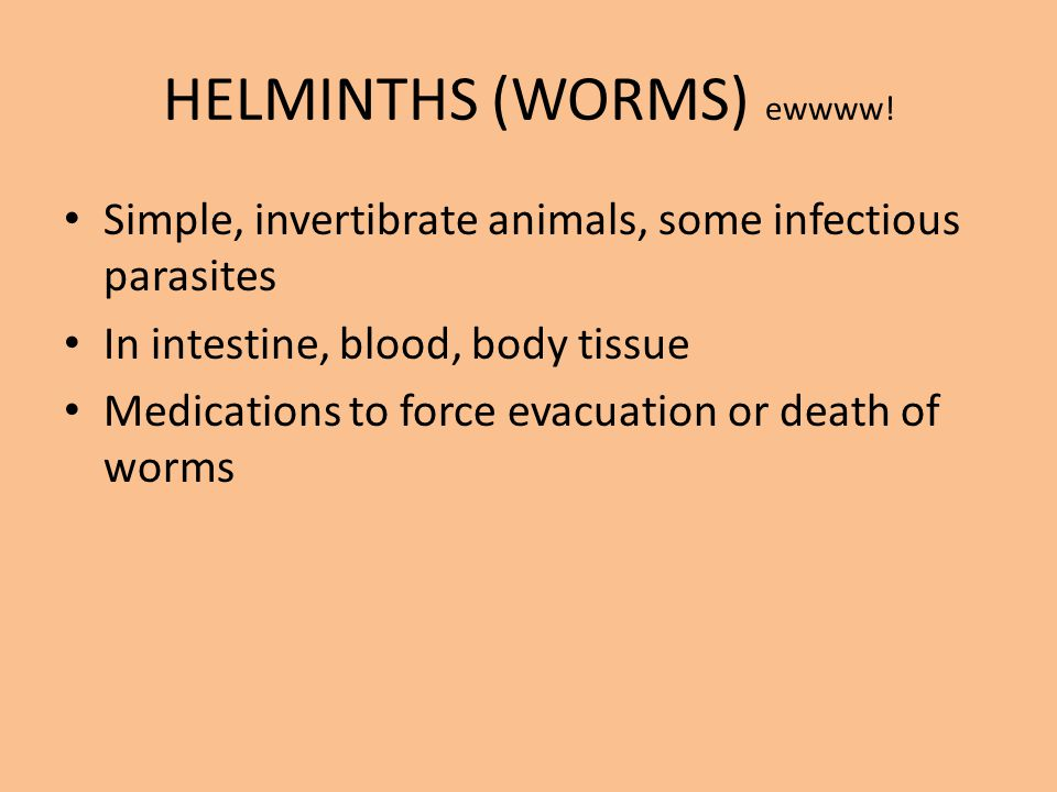 HELMINTHS (WORMS) ewwww! Simple, invertibrate animals, some infectious parasites In intestine, blood, body tissue Medications to force evacuation or d