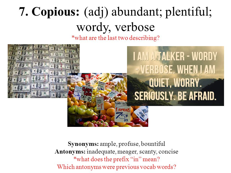 7. Copious: (adj) abundant; plentiful; wordy, verbose *what are the last two describing.