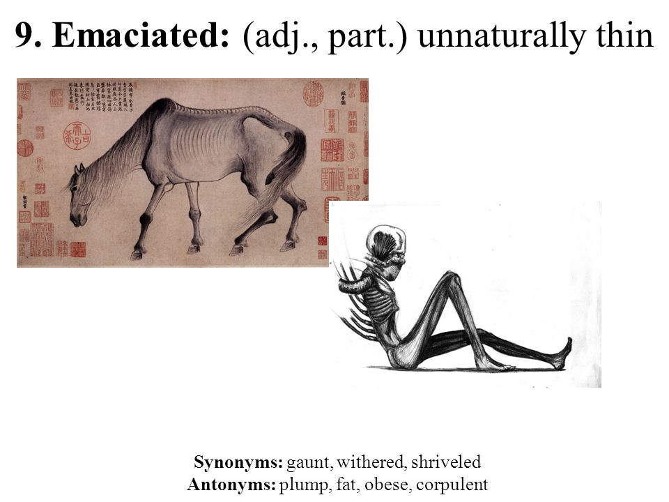 9. Emaciated: (adj., part.) unnaturally thin Synonyms: gaunt, withered, shriveled Antonyms: plump, fat, obese, corpulent
