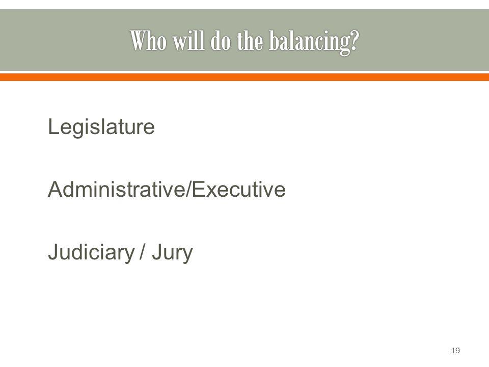 Legislature Administrative/Executive Judiciary / Jury 19