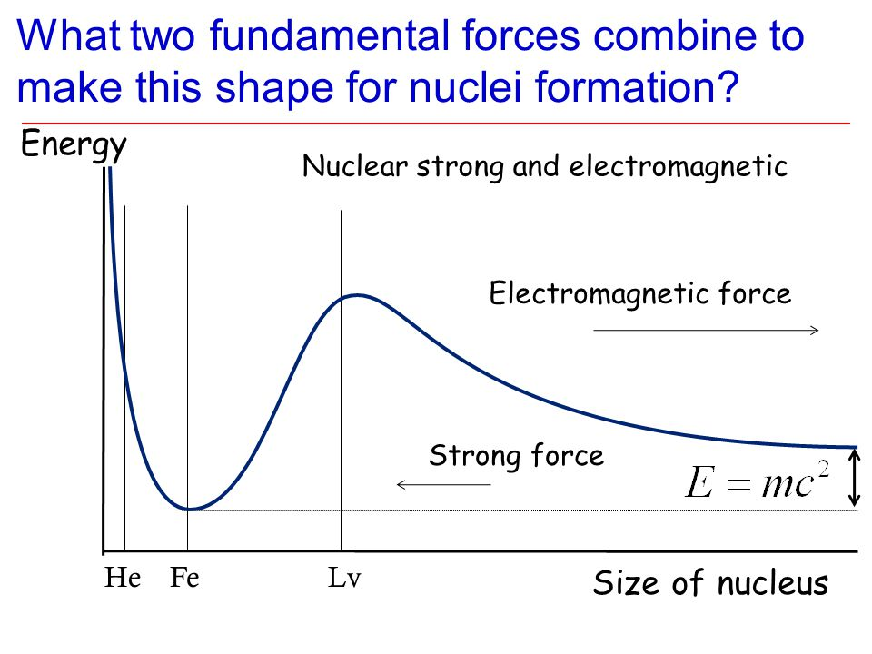 What two fundamental forces combine to make this shape for nuclei formation? Energy Size of nucleus Strong force Electromagnetic force Nuclear strong