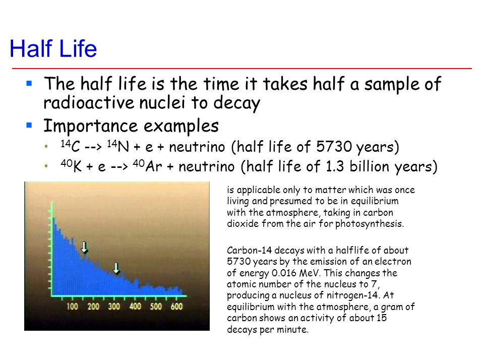 Half Life  The half life is the time it takes half a sample of radioactive nuclei to decay  Importance examples 14 C --> 14 N + e + neutrino (half l