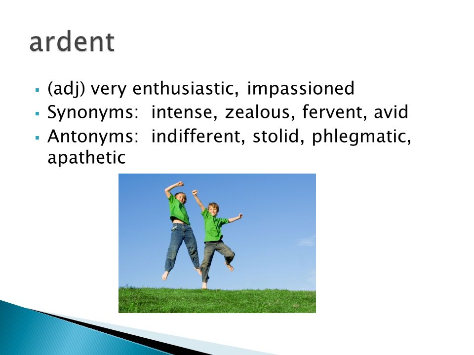  (adj) very enthusiastic, impassioned  Synonyms: intense, zealous, fervent, avid  Antonyms: indifferent, stolid, phlegmatic, apathetic