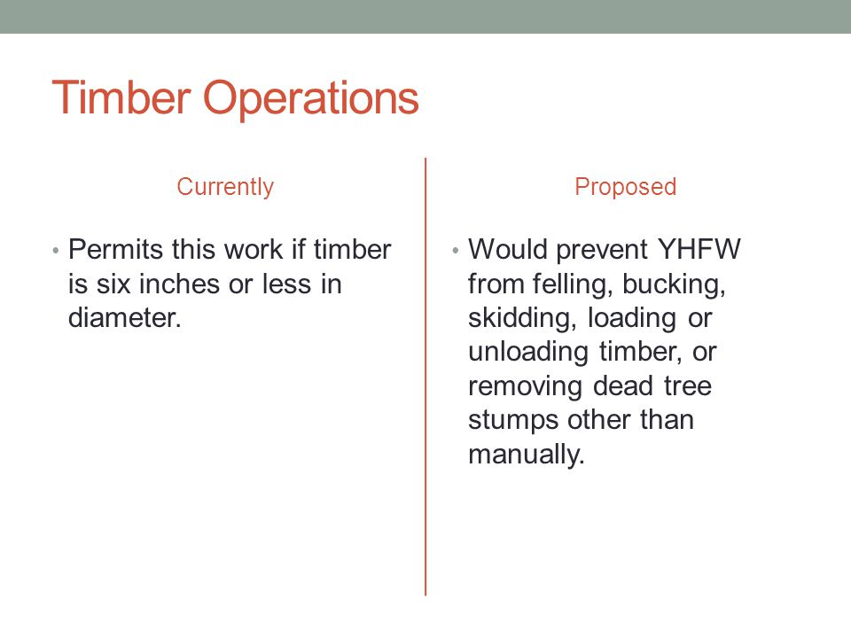 Timber Operations Currently Permits this work if timber is six inches or less in diameter.