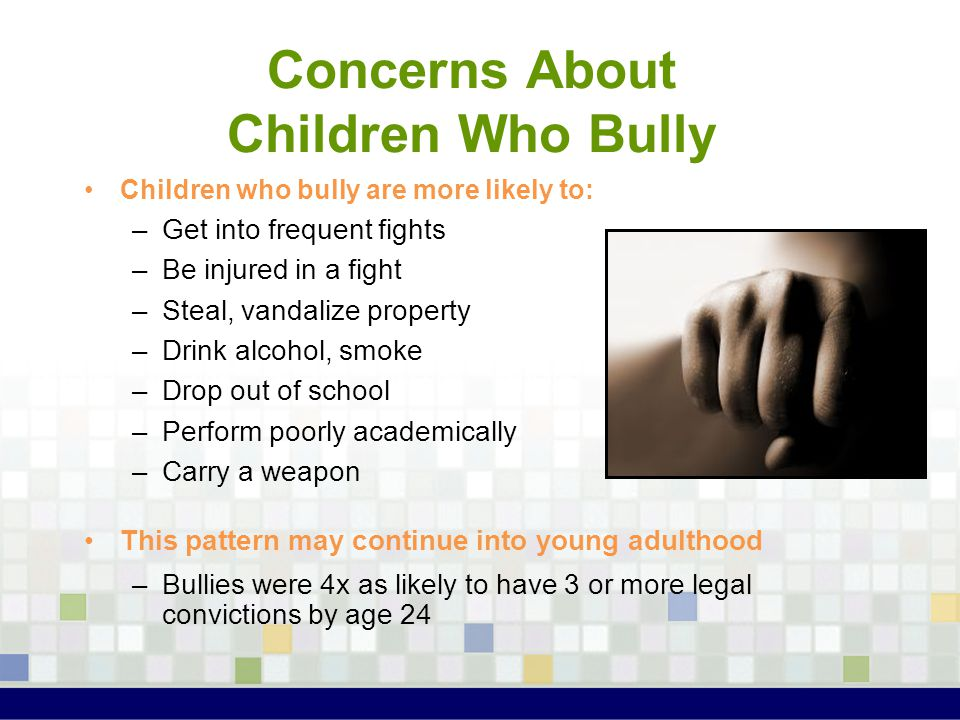 Concerns About Children Who Bully Children who bully are more likely to: –Get into frequent fights –Be injured in a fight –Steal, vandalize property –