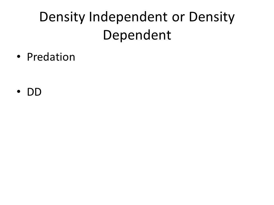 Density Independent or Density Dependent Predation DD
