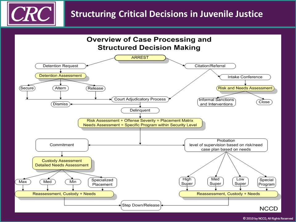 © 2010 by NCCD, All Rights Reserved Structuring Critical Decisions in Juvenile Justice