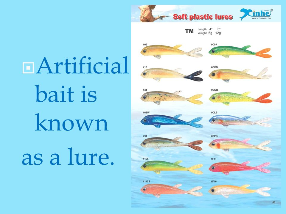  Artificial bait is known as a lure.