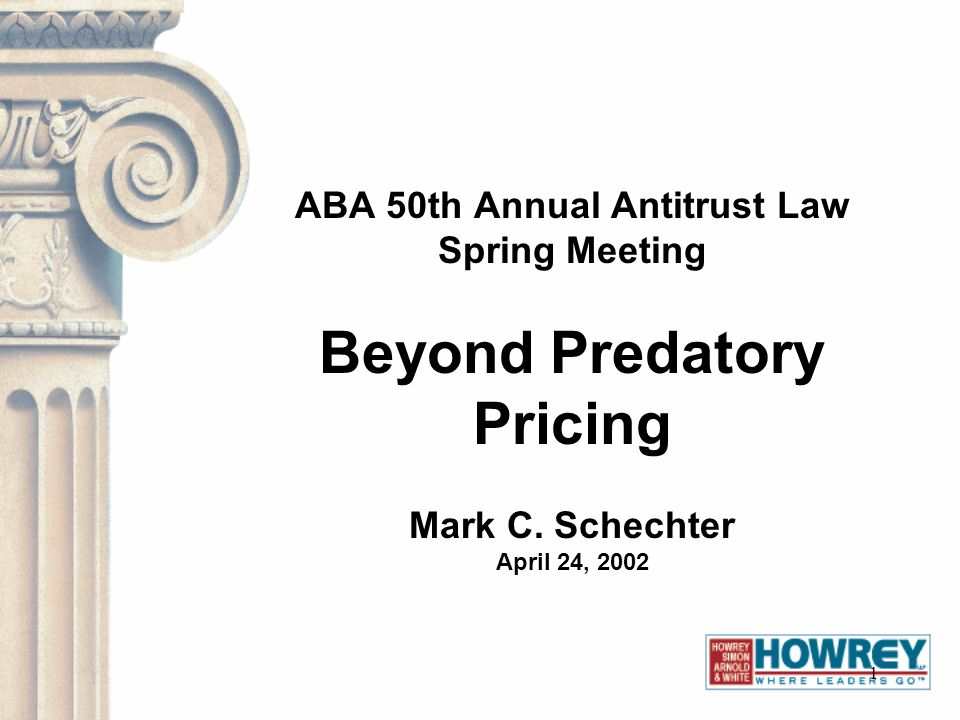 1 ABA 50th Annual Antitrust Law Spring Meeting Beyond Predatory Pricing Mark C. Schechter April 24, 2002
