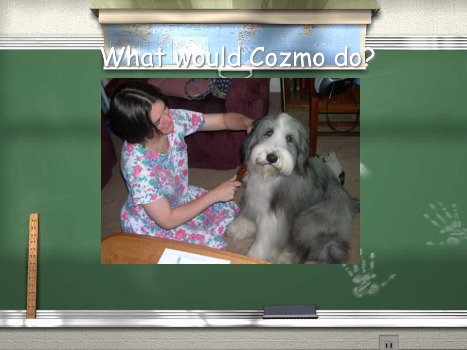 What would Cozmo do