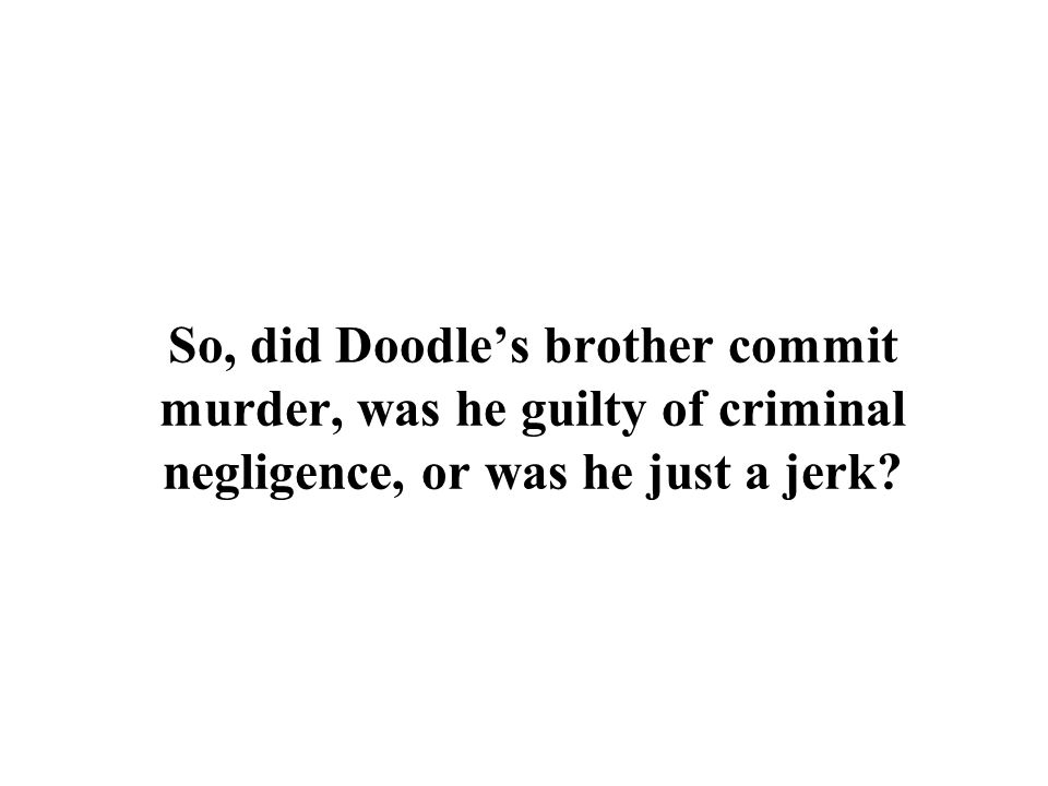 So, did Doodle's brother commit murder, was he guilty of criminal negligence, or was he just a jerk