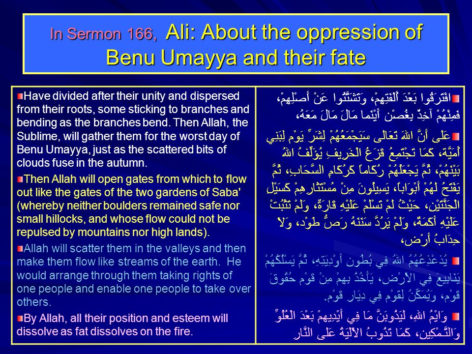 In Sermon 166, Ali: About the oppression of Benu Umayya and their fate Have divided after their unity and dispersed from their roots, some sticking to branches and bending as the branches bend.