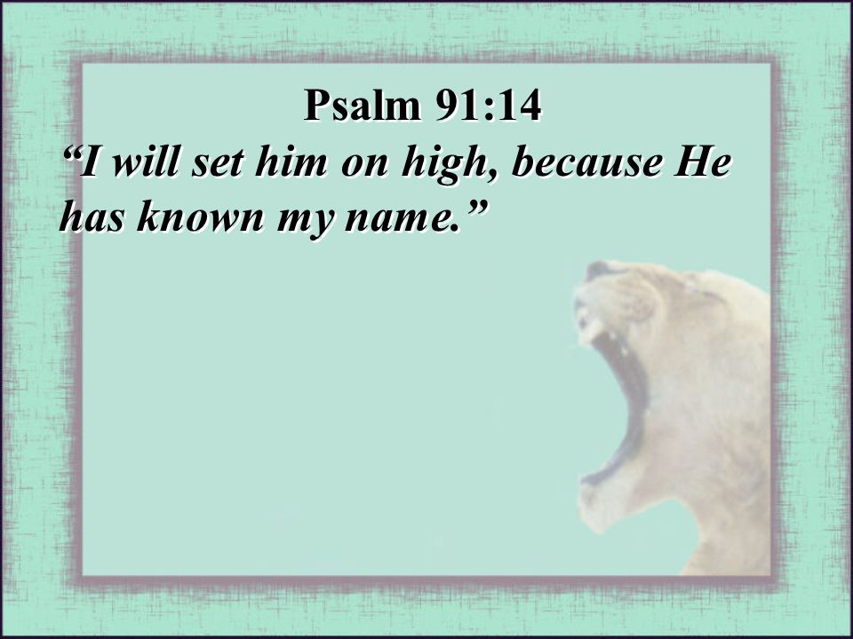 Psalm 91:14 I will set him on high, because He has known my name. Psalm 91:14 I will set him on high, because He has known my name.