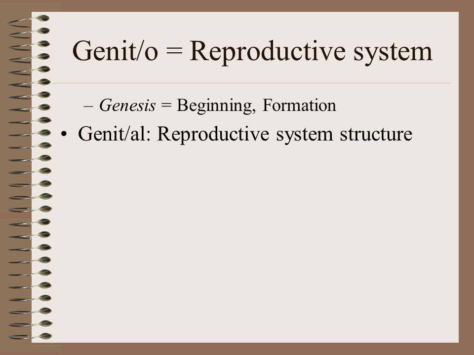 Genit/o = Reproductive system –Genesis = Beginning, Formation Genit/al: Reproductive system structure