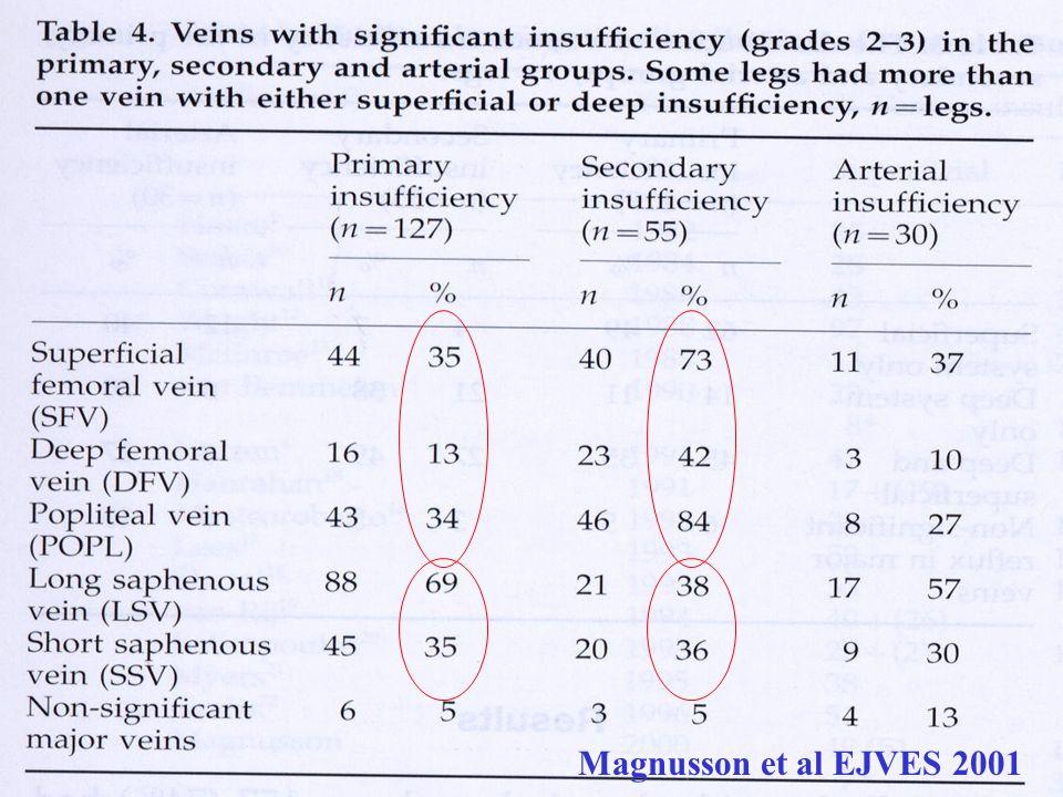 Magnusson et al EJVES 2001
