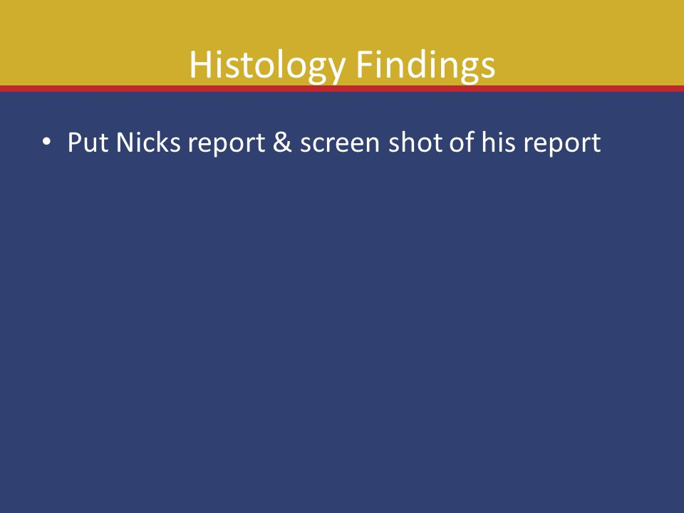 Histology Findings Put Nicks report & screen shot of his report
