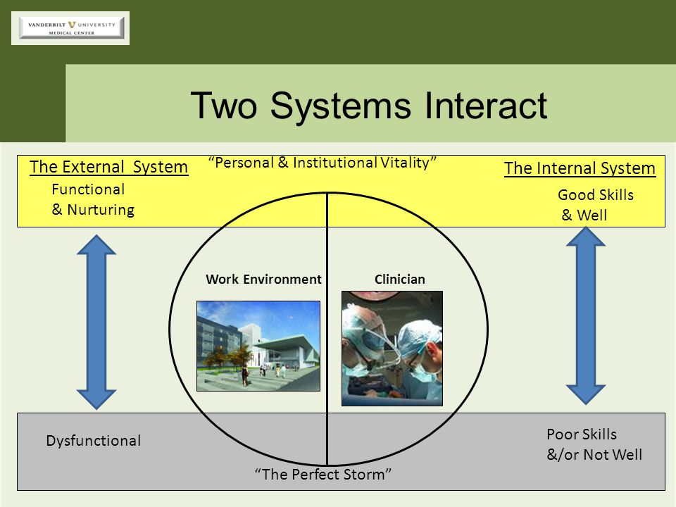 """""""Personal & Institutional Vitality"""" """"The Perfect Storm"""" Two Systems Interact ClinicianWork Environment The Internal System Good Skills & Well Poor Ski"""