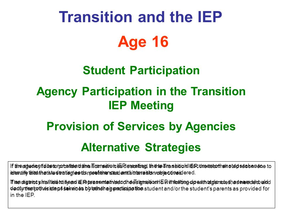 Age 16 Student Participation Agency Participation in the Transition IEP Meeting Provision of Services by Agencies Alternative Strategies Transition an
