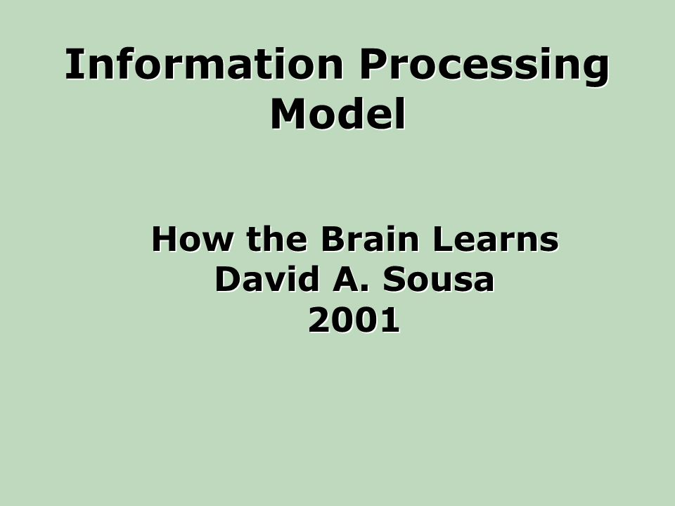 Information Processing Model How the Brain Learns David A.