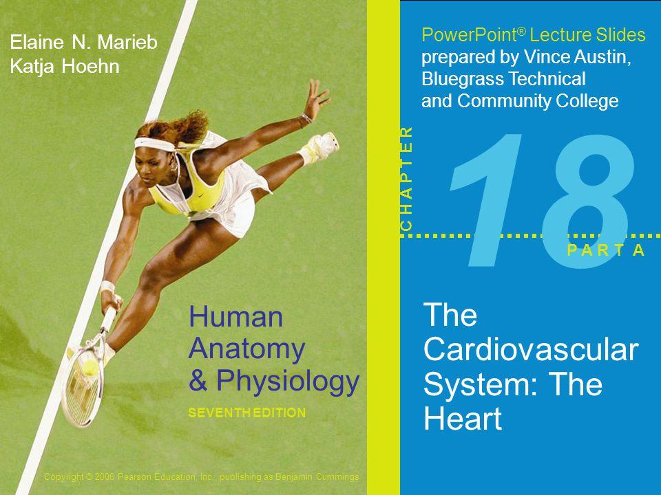 Copyright © 2006 Pearson Education, Inc., publishing as Benjamin Cummings Human Anatomy & Physiology SEVENTH EDITION Elaine N.