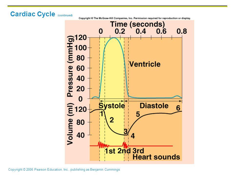 Copyright © 2006 Pearson Education, Inc., publishing as Benjamin Cummings Cardiac Cycle (continued)